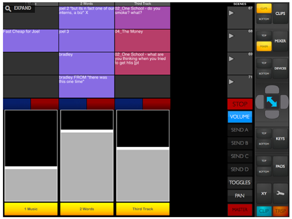 Ira Glass Ableton Live Session View
