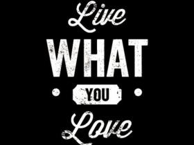 Live Love Sound
